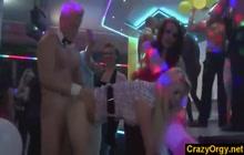 Euro sluts fucking male strippers